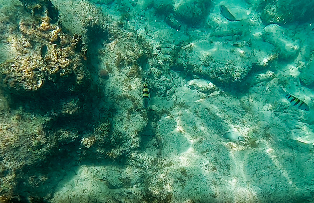 Capture 3.2 1 klein - De stranden van Curaçao die je niet mag overslaan