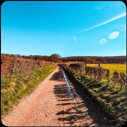 uitgelicht rond 5 - Wandelroute Zuid-Limburg: De heuvels bij Maastricht