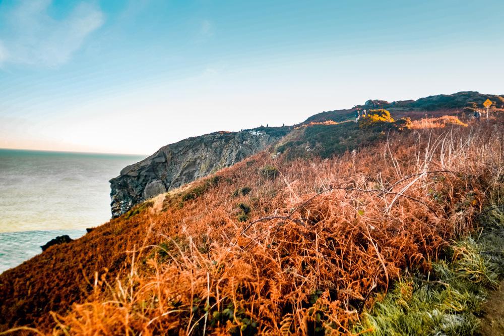 DSC02126 1 klein - Wandelen over de kliffen van Ierland: de Howth Cliff Walk
