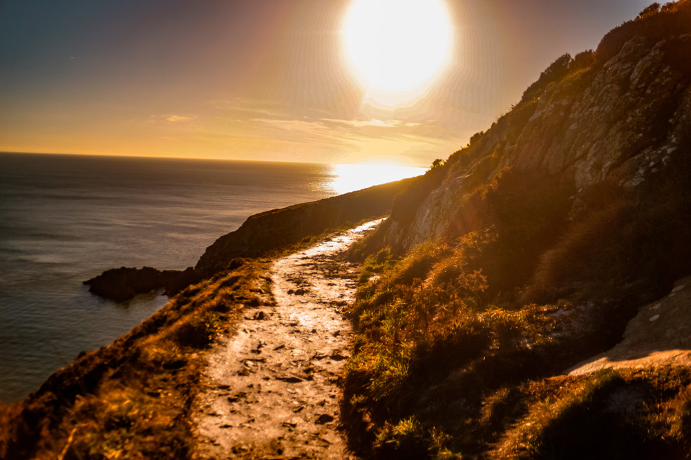 DSC02137 1 klein 1 - Wandelen over de kliffen van Ierland: de Howth Cliff Walk