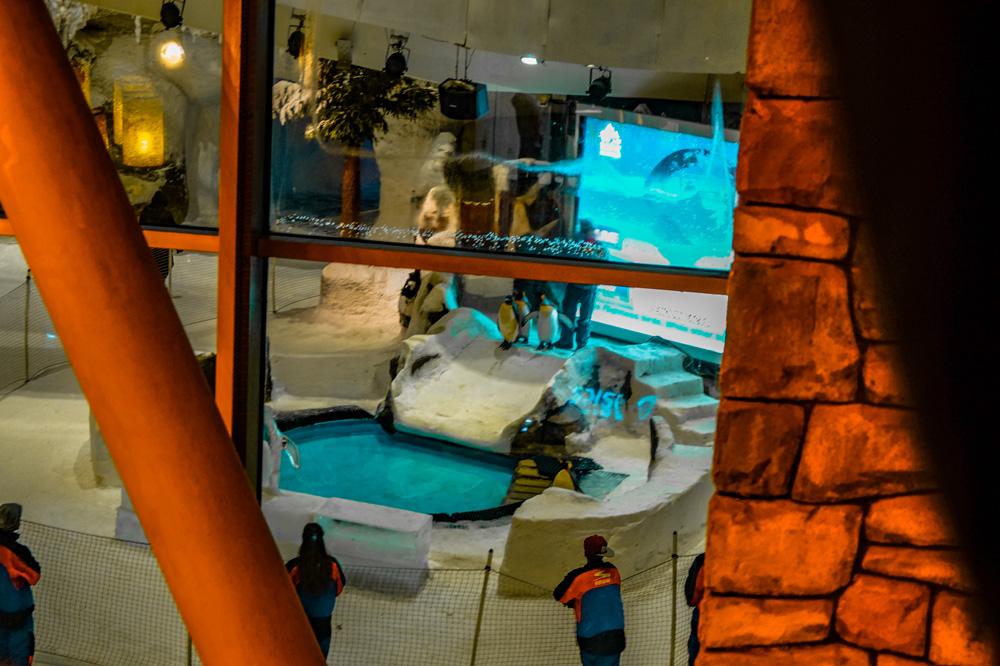 DSC03657 1 klein - 10x dingen die je moet doen in Dubai