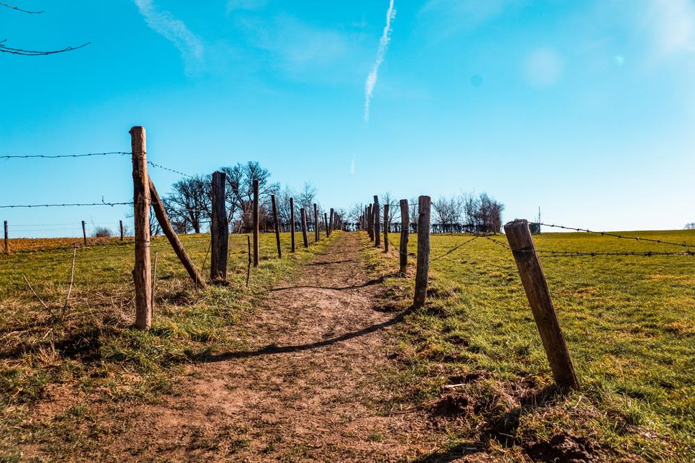 DSC05260 1 klein - Wandelroute Zuid-Limburg: De heuvels bij Maastricht