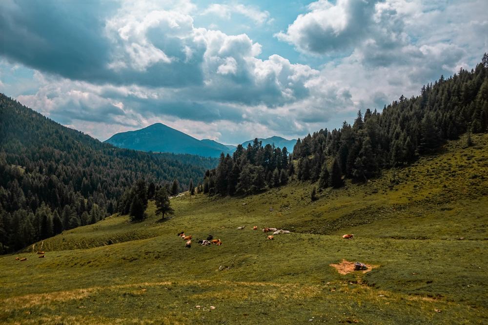 Alpen oostenrijk klein - Dit zijn de leukste bestemmingen in Oostenrijk