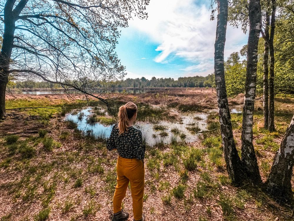 Helenaveen 3 klein - Handige websites en apps voor wandelroute inspiratie