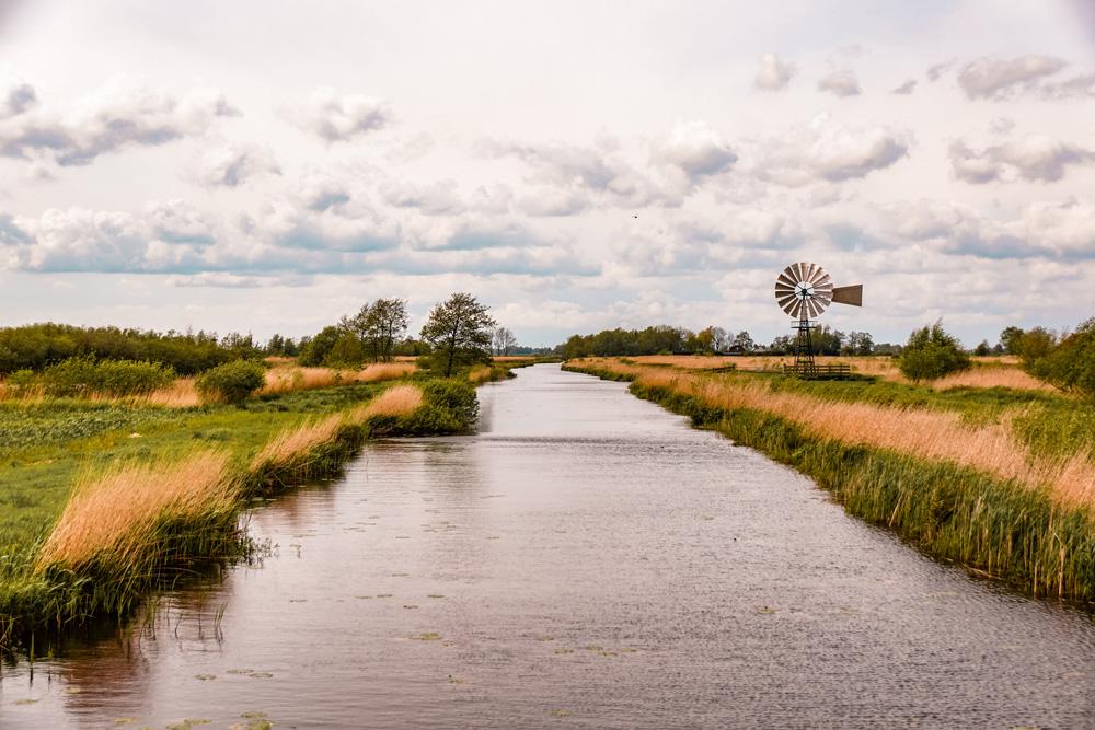 NP alde Feanen friesland 3 - De leukste dingen om te doen in Friesland