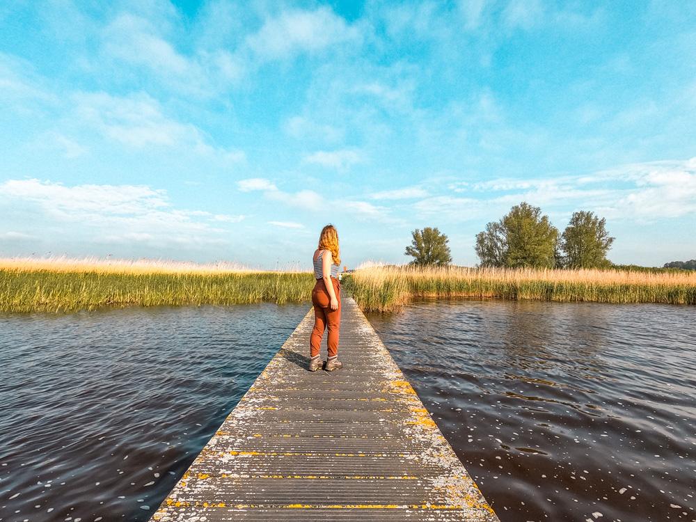 NP lauwersmeer friesland 4 - De leukste dingen om te doen in Friesland