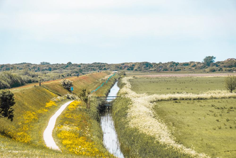 Schiermonnikoog - De leukste dingen om te doen in Friesland