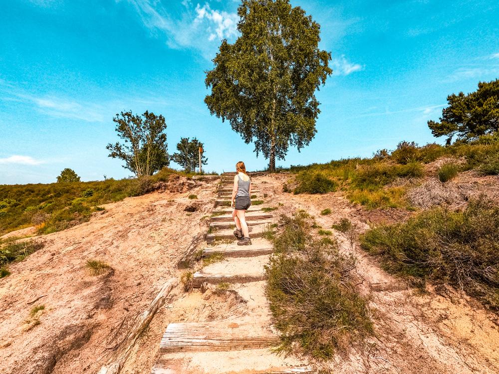 Veluwe 1 klein - Handige websites en apps voor wandelroute inspiratie