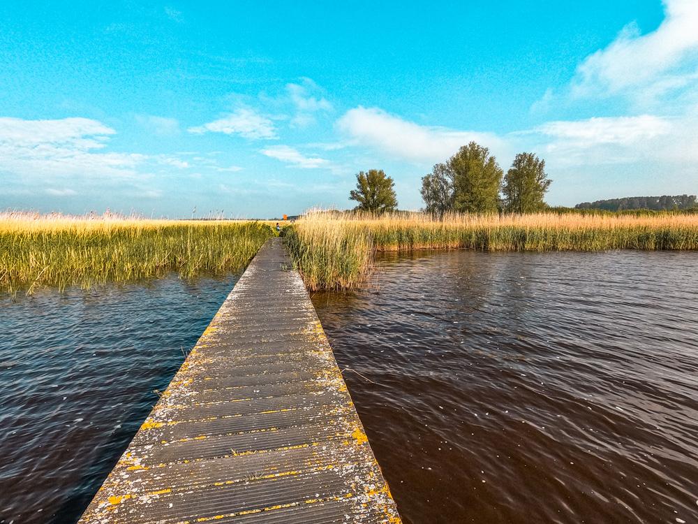 Vakantiehuisje villapark lauwerssee friesland 11 - Villapark Lauwerssee in Friesland: een zee van rust & ruimte