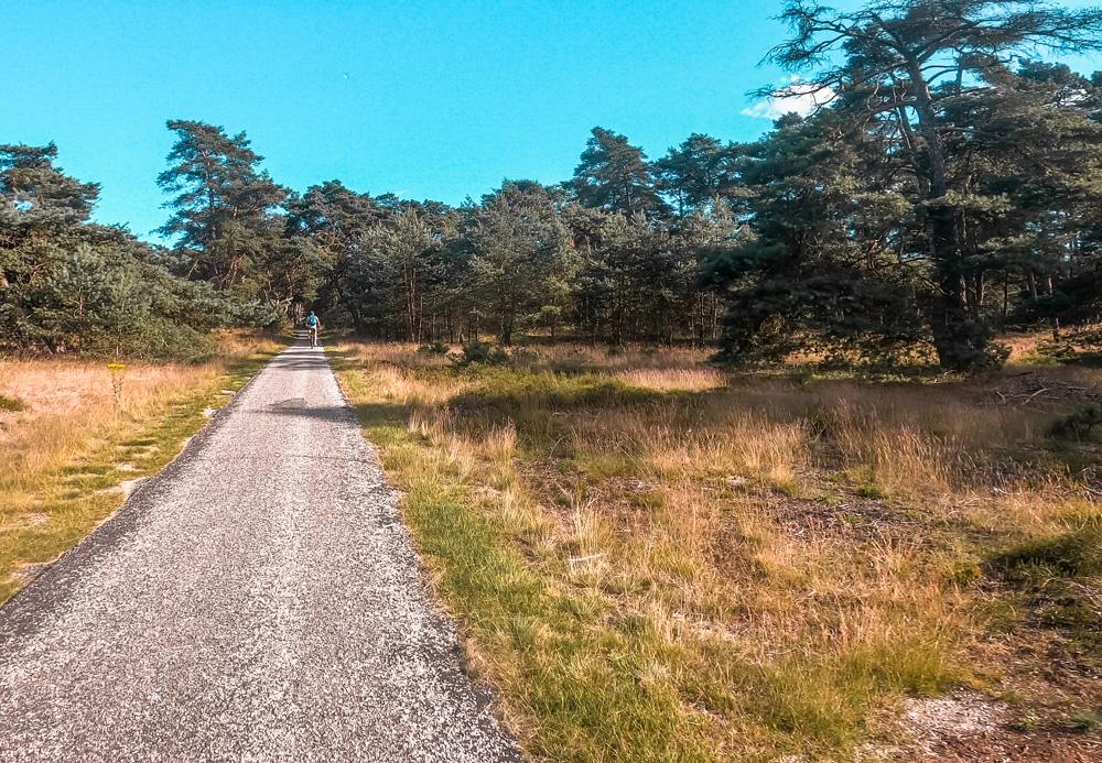 Nationaal Park de Hoge veluwe 2 - Nationaal Park De Hoge Veluwe: een echt fietsparadijs