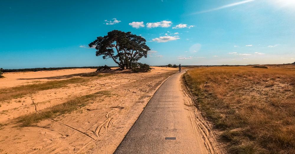 Nationaal Park de Hoge veluwe 4 - Nationaal Park De Hoge Veluwe: een echt fietsparadijs