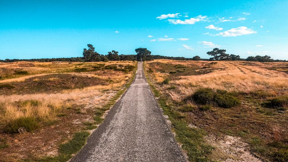 Nationaal Park de Hoge veluwe 5 - Nationaal Park De Hoge Veluwe: een echt fietsparadijs