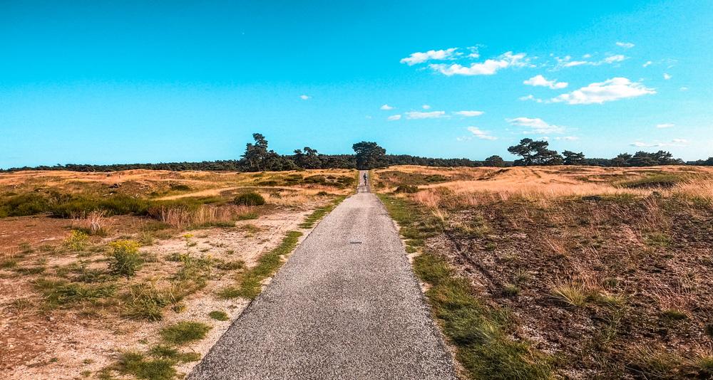 Nationaal Park de Hoge veluwe 6 - Nationaal Park De Hoge Veluwe: een echt fietsparadijs