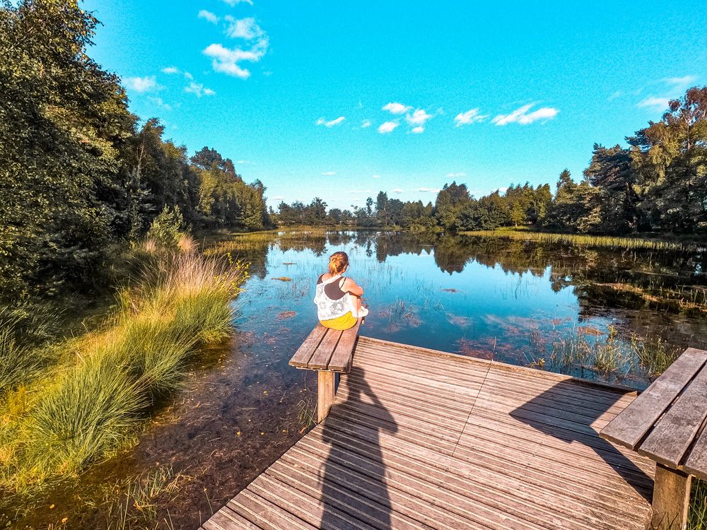 Nationaal Park de Hoge veluwe bezienswaardigheden 2 - Nationaal Park De Hoge Veluwe: een echt fietsparadijs