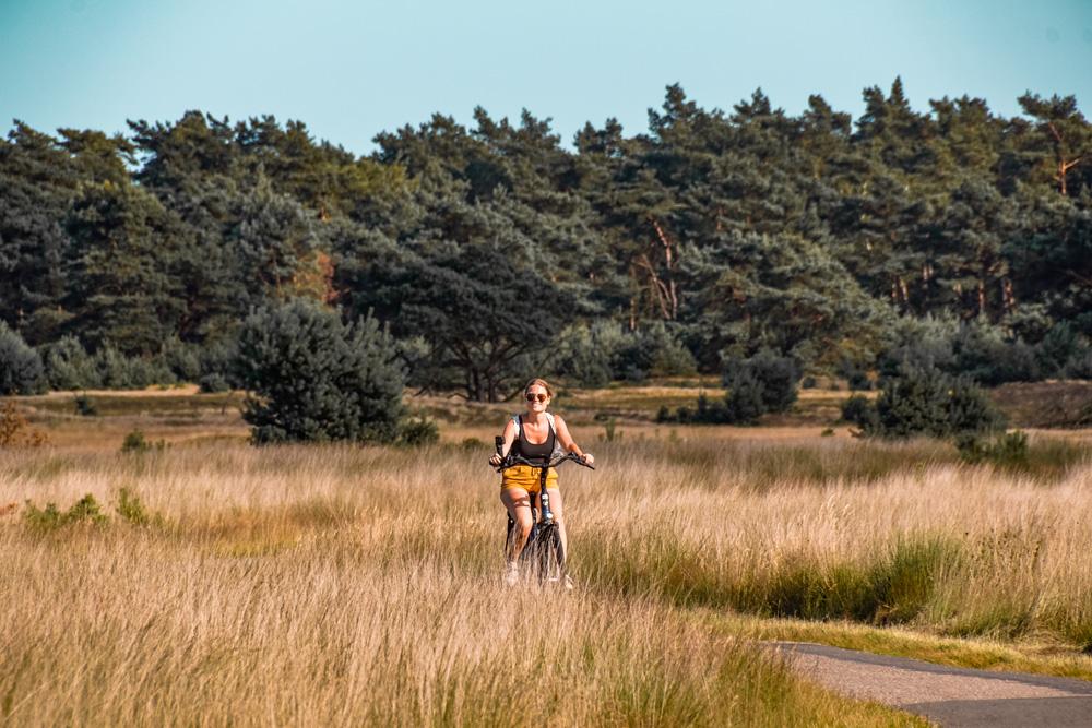 Nationaal Park de Hoge veluwe fietsen - Nationaal Park De Hoge Veluwe: een echt fietsparadijs