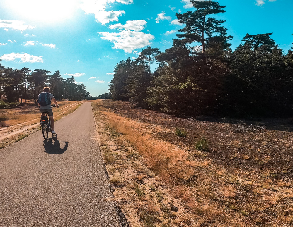 Nationaal Park de Hoge veluwe - Nationaal Park De Hoge Veluwe: een echt fietsparadijs