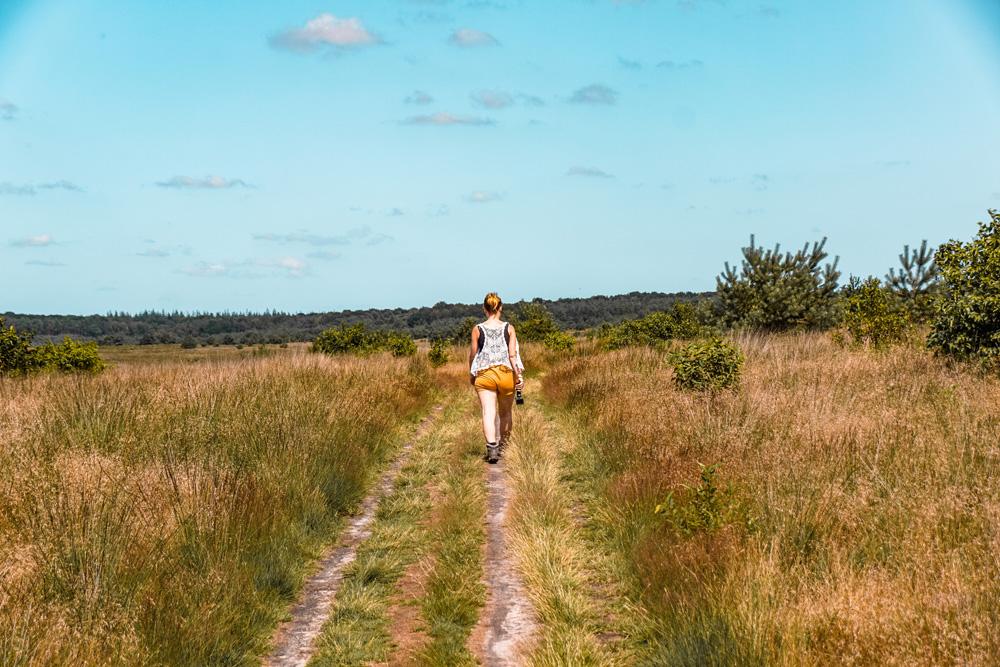 bezienswaardigheden tips Apeldoorn Radio Kootwijk wandeling - Wat te doen in Apeldoorn en omgeving