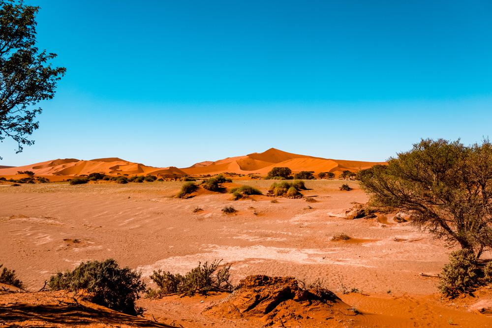 Namibie bezienswaardigheden Sossusvlei - Reisroute: langs de bezienswaardigheden van Namibië