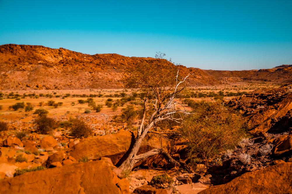 Namibie bezienswaardigheden Twyfelfontein 4 - Reisroute: langs de bezienswaardigheden van Namibië