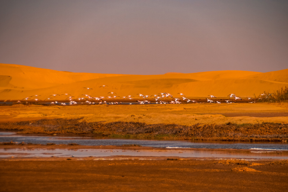 Namibie reisroute - Reisroute: langs de bezienswaardigheden van Namibië